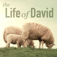 The Life Of David (2015)